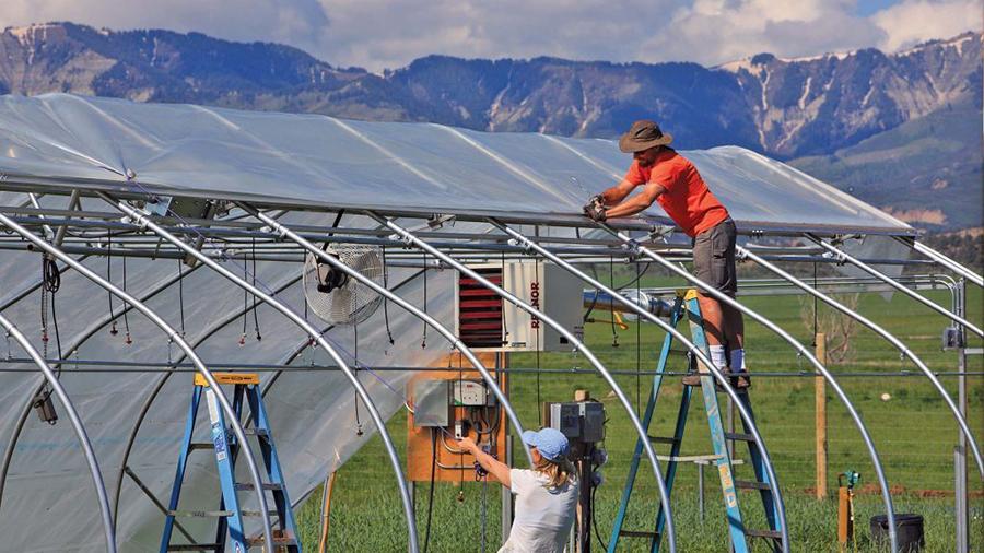 Tiến hành lắp đặt hệ thống nhà kính nông nghiệp